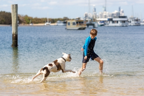 Boy and Dog at Beach