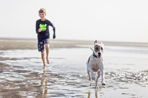 Boy at play with dog on the beach