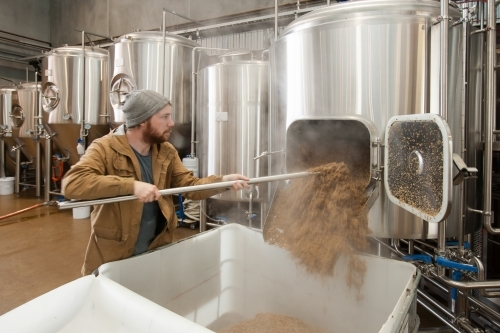 Man removing waste mash from stainless steel tank at a microbrewery