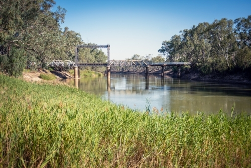 Bridge over the Murray River with green grass in the foreground.