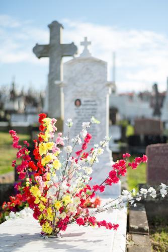 Bright coloured flowers with graves in background