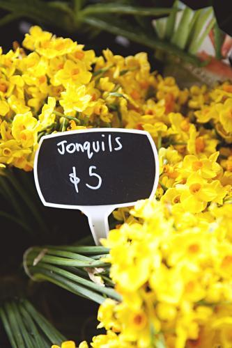 Bunches of yellow jonquils for sale