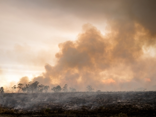 Burnt landscape with billowing brown orange smoke