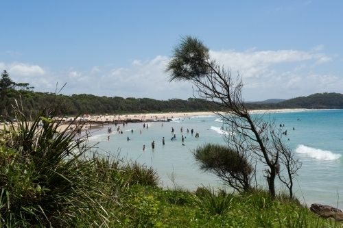 Bush and crowds on the south coast during summer holidays