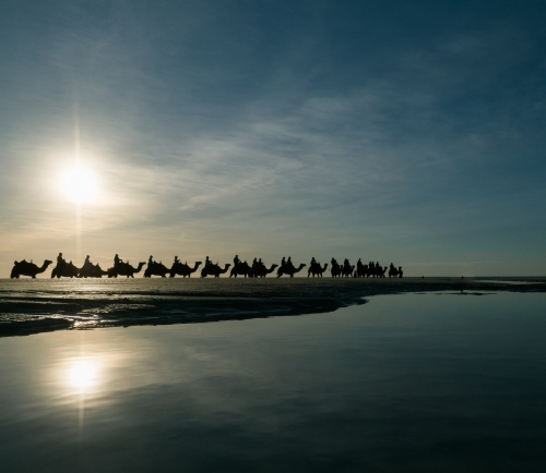 Camel Train on Cable Beach with Setting Sun Overhead