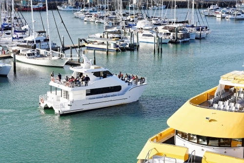 Catamaran leaving marina with whale watching tourist group from Hervey Bay