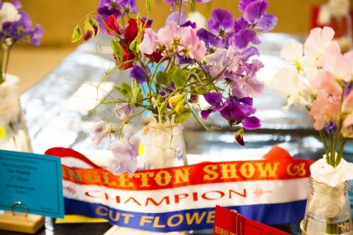 Champion cut flower exhibit at the show with ribbon