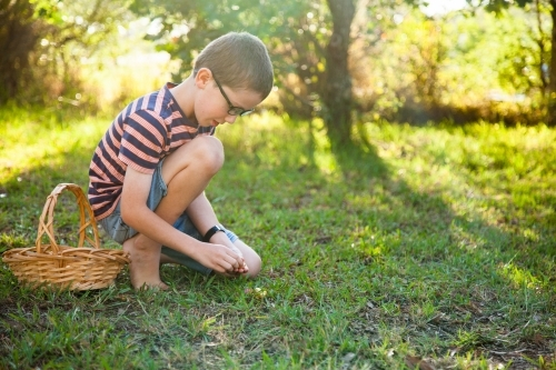 Eight year old boy finding eggs on an Easter egg hunt