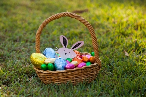 Easter bunny and eggs in cane basket on the lawn