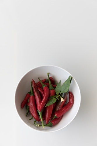 Chillis In A White Bowl - Bottom