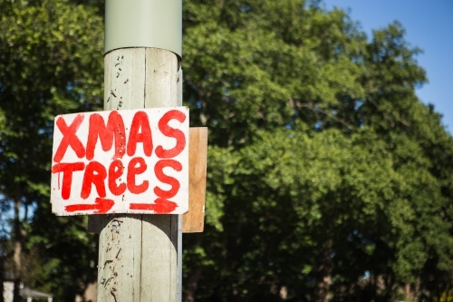 Christmas Tree Sign on pole
