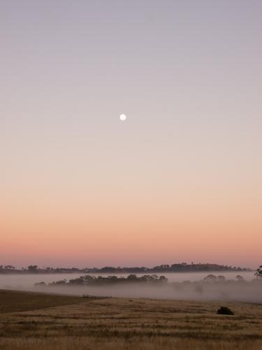 Moon setting over fog at dawn