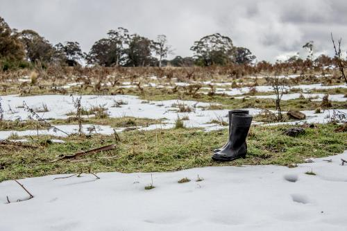 Gumboots standing in a patchy snowfall