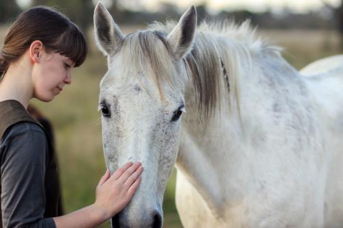 Young teen girl patting a grey horse