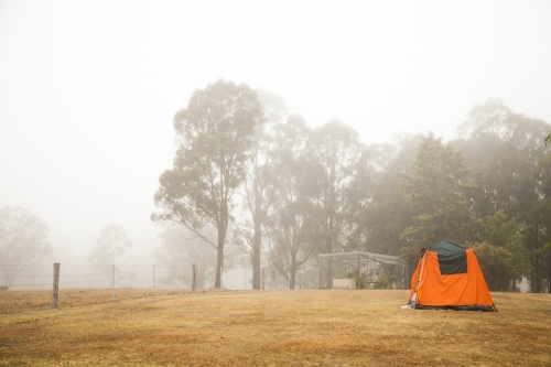 Fog shrouded tent in a farm paddock on a misty morning
