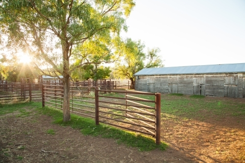 Cattle yards and old stables on a farm in the morning