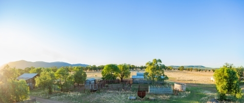Panorama of cattle yards and sheds on farm