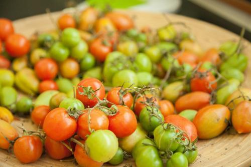 Green and red cherry tomatoes in a bowl