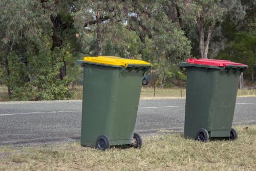 Council bins waiting for collection beside a rural road