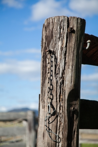 Old wooden fence post and chain in cattle yard