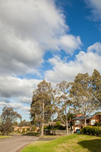 Houses, gumtrees and streets in a town