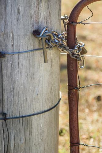 Paddock gate chained closed with a horse proof bolt