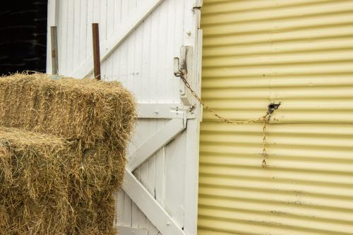 Hay shed door chained open