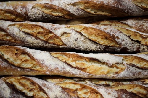Close up of freshly baked semi sourdough baguettes