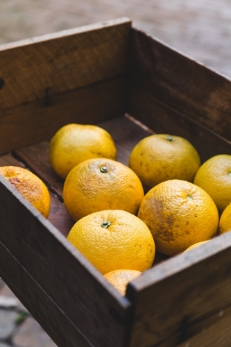 Close up of rustic timber box of orange citrus fruit in yard on table