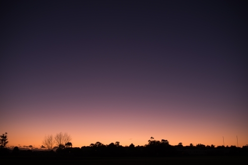 Cloudless sunset with tree line