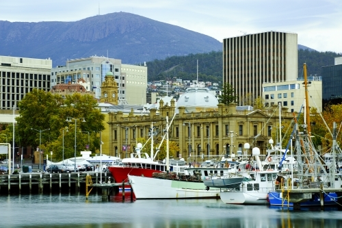 Boats at rest at Constitution Dock, downtown Hobart.