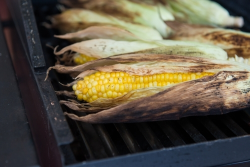 Corn on the cob on the barbecue