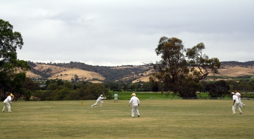 Country cricket match in the Barossa Valley
