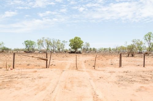 Dry, dusty outback Queensland cattle station fence