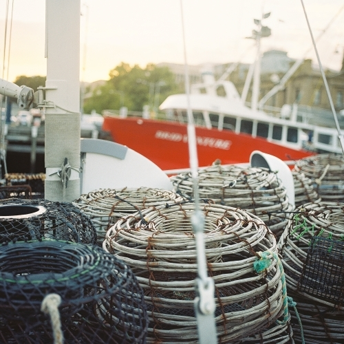 Crab Pot on Boat