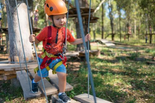 Cute 3 year old mixed race boy plays on an adventure ropes course