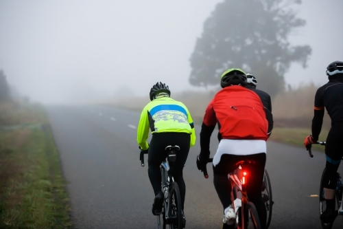 Cyclists riding in a foggy morning on a country road