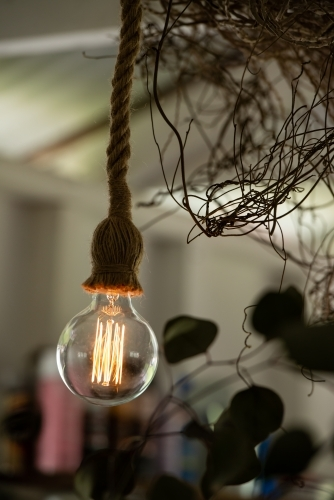Decorative tungsten bulb with large filaments hanging from a rope fitting with blurred background