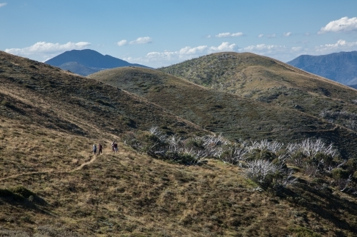 Distant bushwalkers on a track in the high country, Victorian Alps