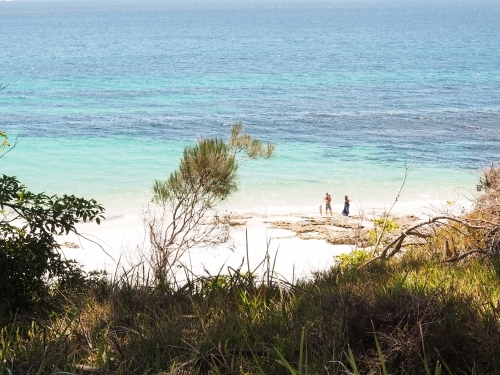 Distant family on beach in Jervis Bay