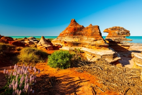 Dramatic orange rock formations with wild flowers in foreground and beautiful turquoise water