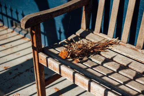 Dried Flowers on Bench