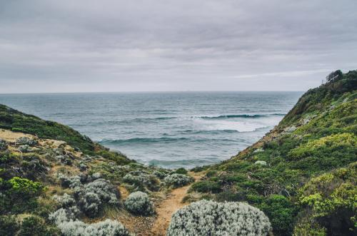 Seascape of scrubs and water along the Great Ocean Road