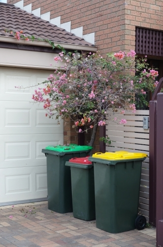 Three coloured garbage bins in a driveway