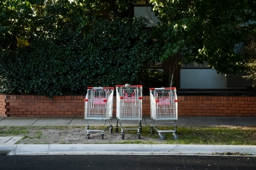 Three trolleys lined up in a row on the nature strip