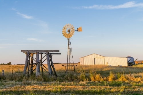 A windmill and old wooden tank stand in a paddock near a farmers shed