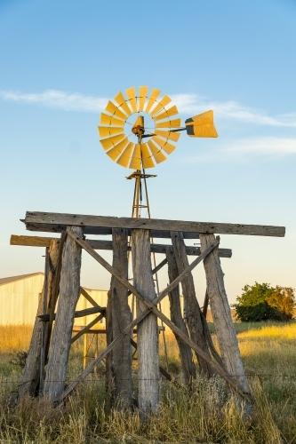 A windmill and old wooden tank stand in a paddock.