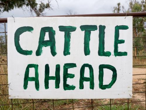 "Hand painted ""Cattle Ahead"" sign on a gate"