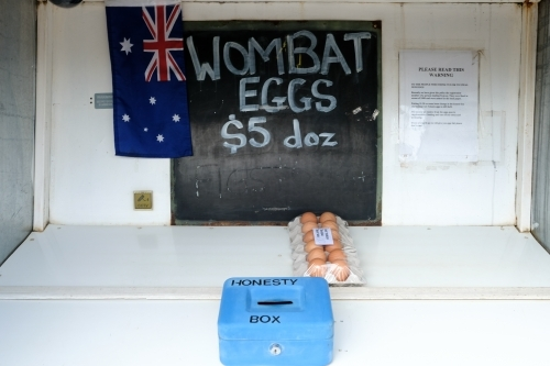 Eggs for sale at a roadside honesty box