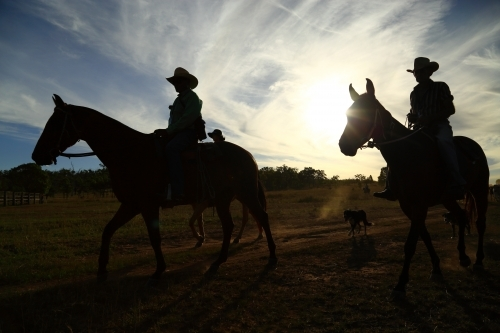 Eidsvold Charity Cattle Drive 2AM-002331